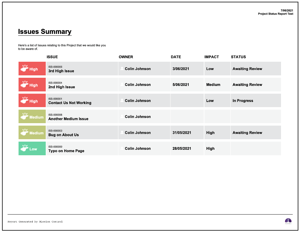 Salesforce Project Management Software - Project Status Report Issue Summary