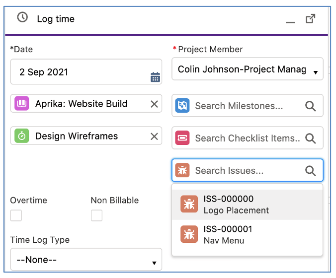 Salesforce Project Management Software - Log Time Modal Relate to Issues